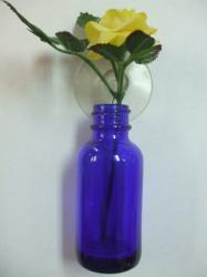 blue hanging bottle.jpg